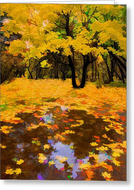 In The Autumn Mood Greeting Card