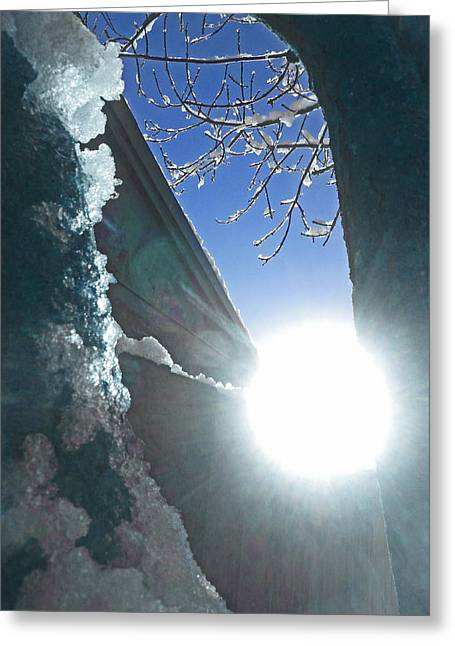 Greeting Card featuring the photograph In The Cold Of The Sun by Steve Taylor