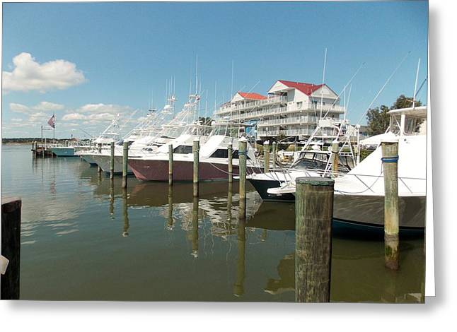 In The Harbor Greeting Card by Angelika MacDonald