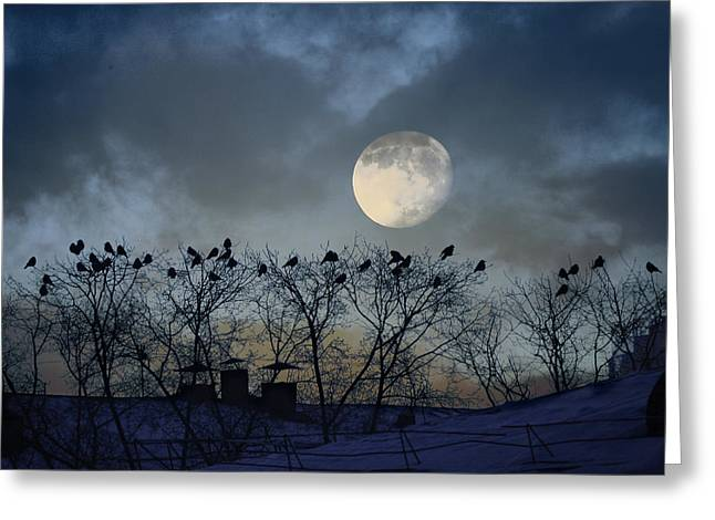 In The Moon Light Greeting Card