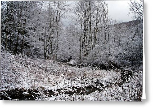 Indian Creek Greeting Card by Christian Mattison