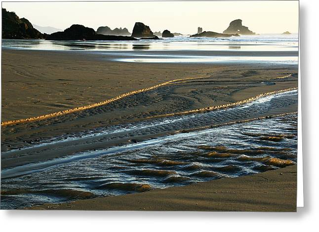 Indian Gold Stream Greeting Card by Steven A Bash