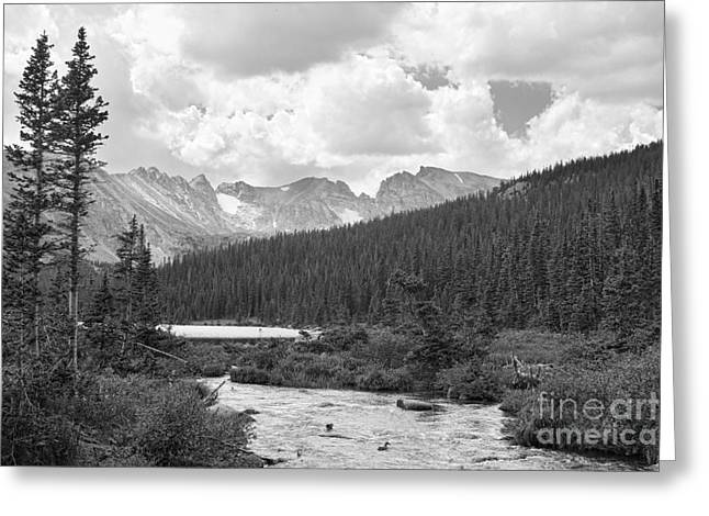 Indian Peaks Summer Day Bw Greeting Card by James BO  Insogna