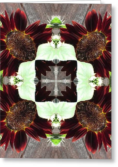 Indian Red Sunflowers Greeting Card