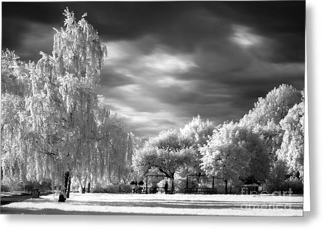 Infra Red Park Greeting Card