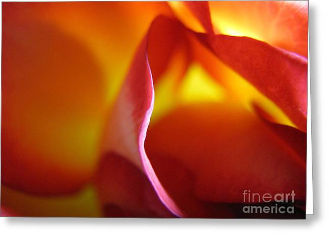 Greeting Card featuring the photograph Inner Flame by Stacey Zimmerman