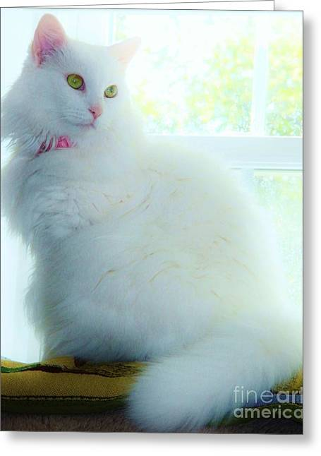 Innocence 2 Greeting Card by Judy Via-Wolff