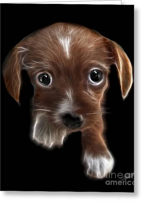 Innocent Loving Eyes	 Greeting Card by Peter Piatt