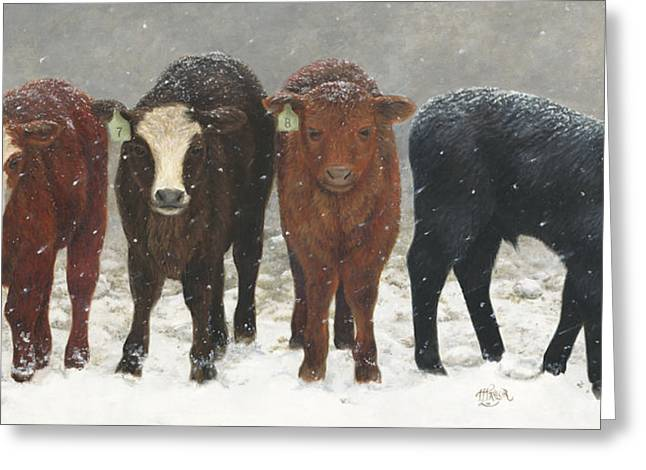 Inquisitive Calves Greeting Card