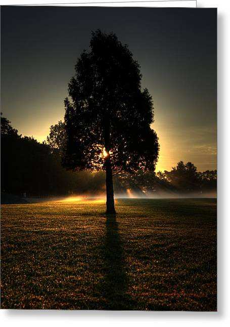 Inspirational Tree Greeting Card