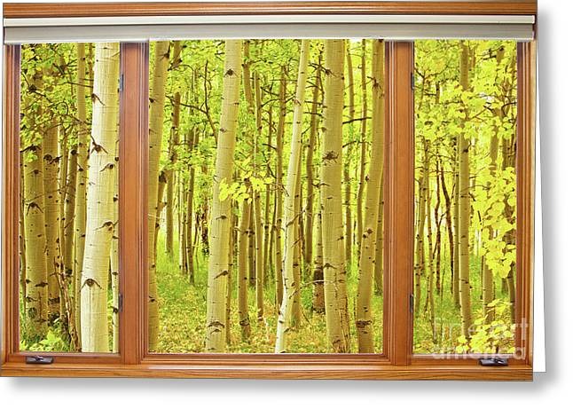 Into The Aspens Window View Greeting Card by James BO  Insogna