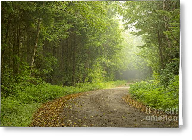 Into The Beyond Greeting Card by Idaho Scenic Images Linda Lantzy
