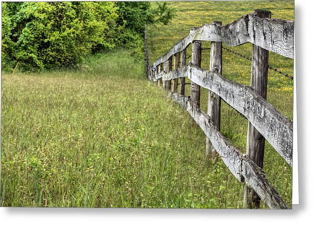 Into The Distance  Greeting Card by JC Findley