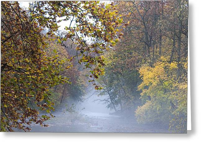 Into The Mist Greeting Card by Bill Cannon
