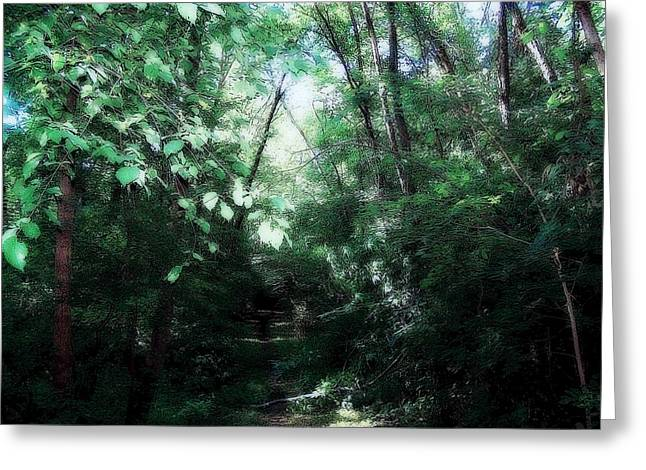 Iowa Forest Greeting Card by Clarice  Lakota