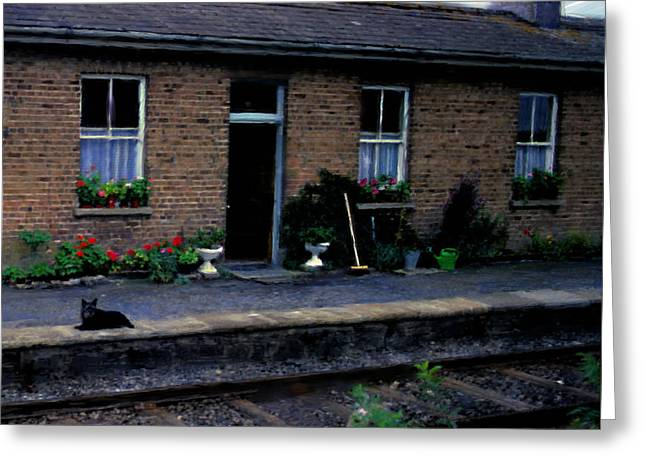 Ireland Series - Crossing Station Dog Greeting Card by Jim Pavelle