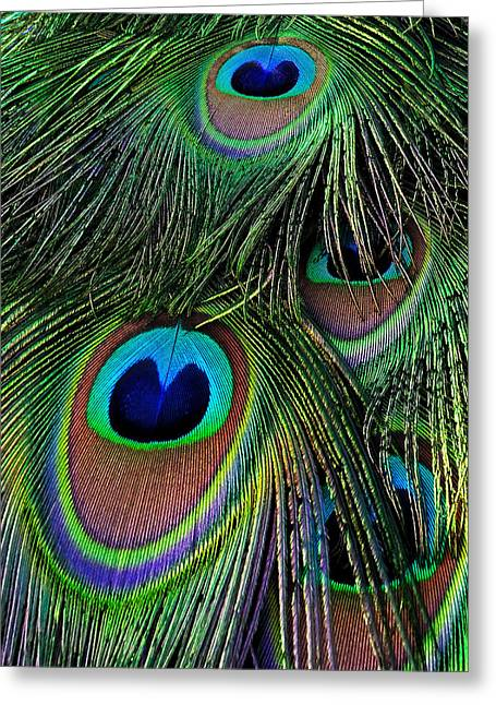 Iridescent Eyes Greeting Card