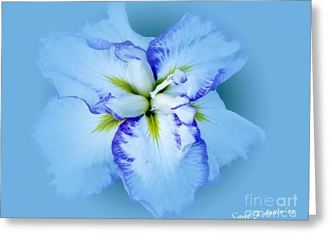Iris In Blue Greeting Card