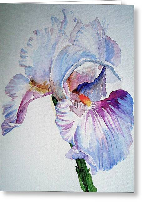Iris In The Garden Greeting Card by Sharon Mick