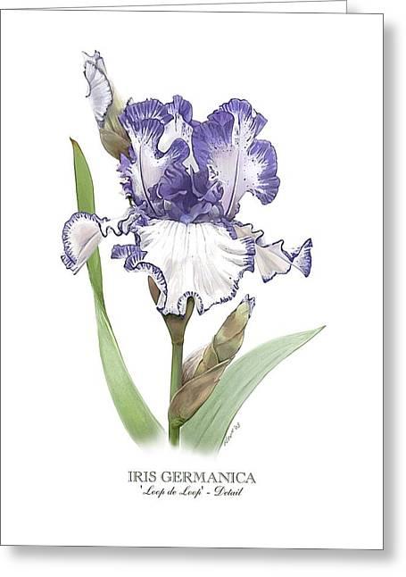Iris Loop De Loop Greeting Card