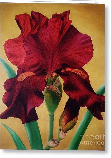 Greeting Card featuring the painting Iris by Paula L