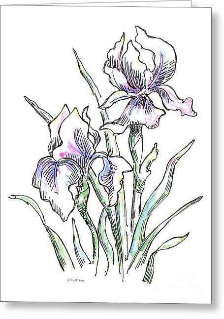 Iris Watercolor Drawing 2 Greeting Card