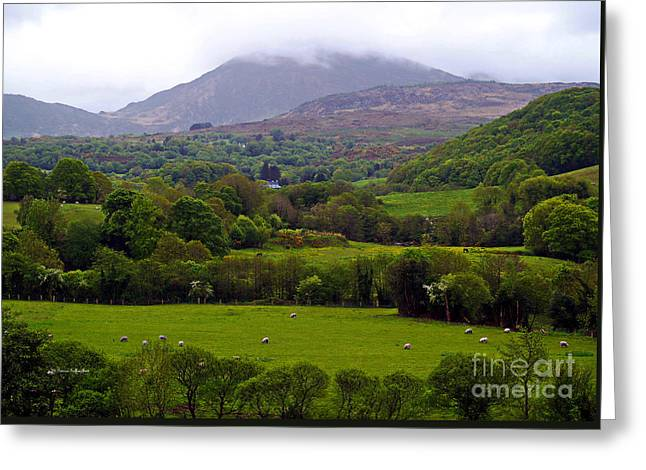 Irish Countryside II Greeting Card