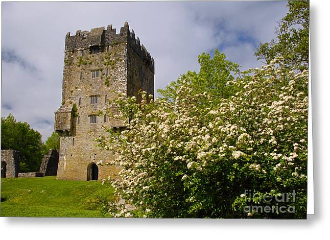 Irish Travel Landscape Aughnanure Castle Ireland Greeting Card