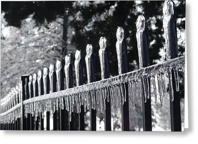 Iron And Ice 1 Greeting Card by Elizabeth Sullivan