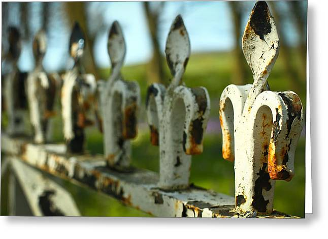 Iron Gate II Greeting Card by Jacqui Collett