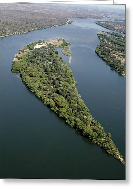 Island On The Zambezi River Greeting Card by Tony Camacho