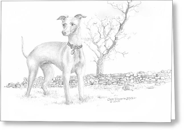 Greeting Card featuring the drawing Italian Greyhound by Jim Hubbard