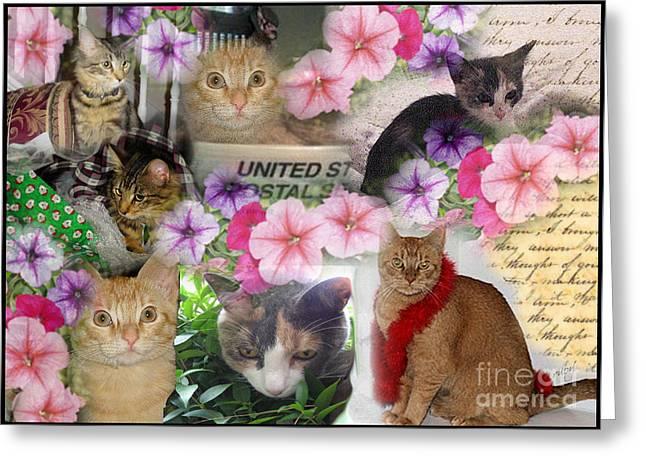 Itty Bitty Kitties Greeting Card