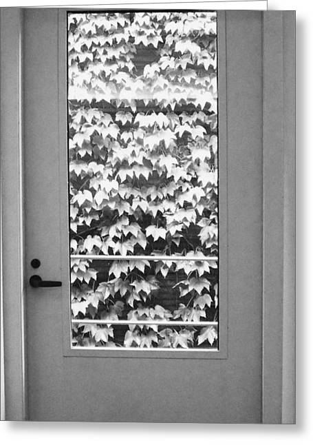 Ivy Door Greeting Card