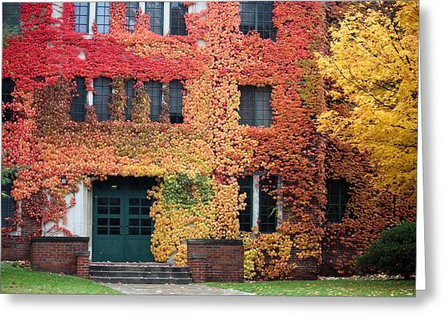 Ivy League Greeting Card by Penny Hunt