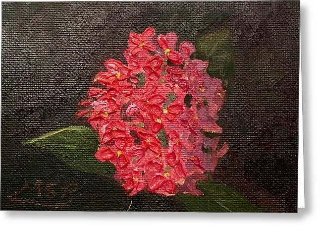 Ixora Bloom Greeting Card by Maria Soto Robbins