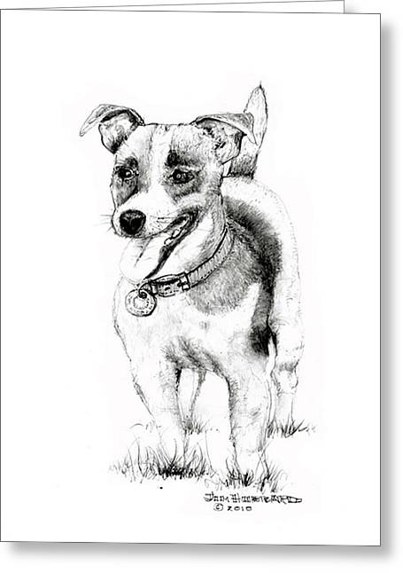 Greeting Card featuring the drawing Jack Russell Terrier by Jim Hubbard