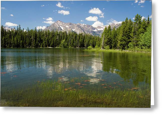 Jackson Lake View Greeting Card by Phil Stone