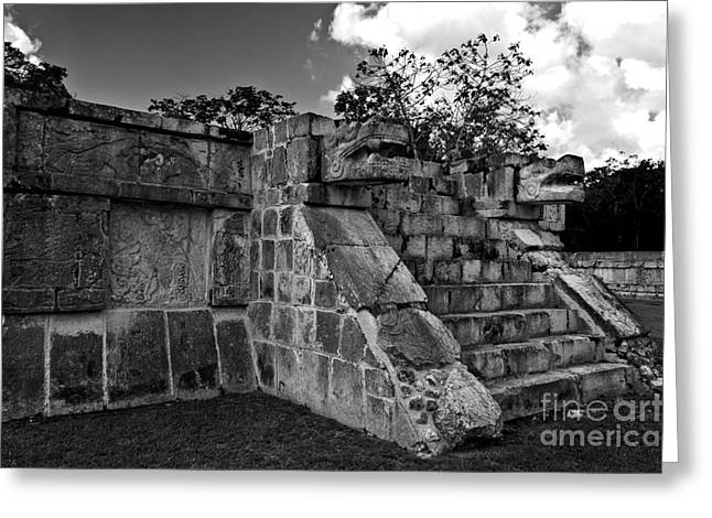 Jaguar Stairs Black And White Greeting Card by Ken Frischkorn