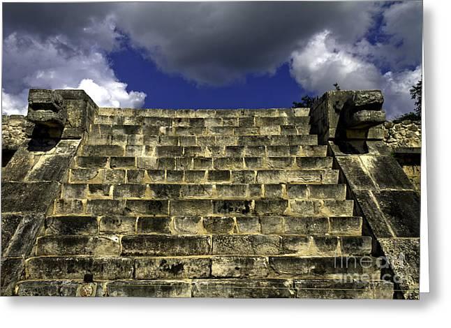 Jaguar Stairway Two Greeting Card by Ken Frischkorn