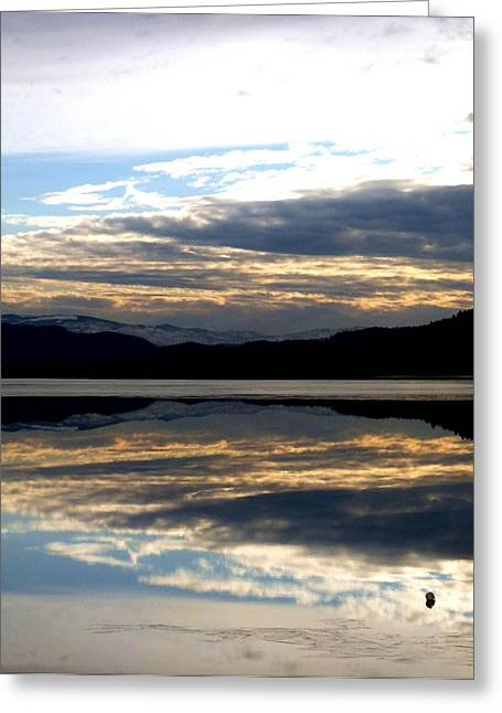 January Reflections Greeting Card