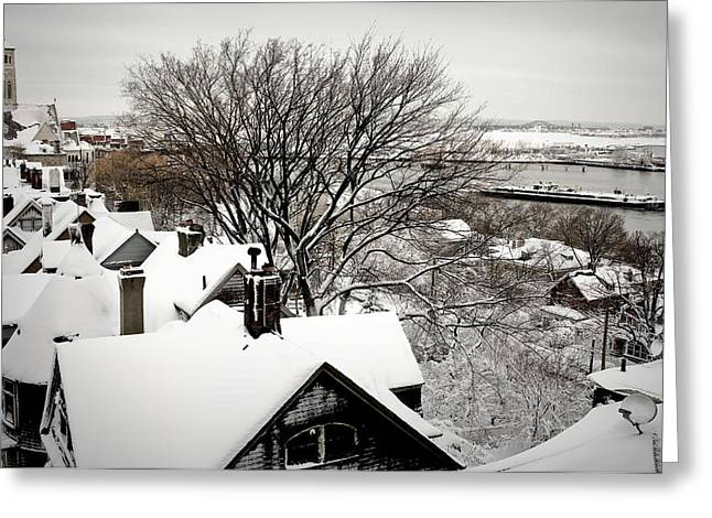 January Storm Greeting Card by Lynn Wohlers