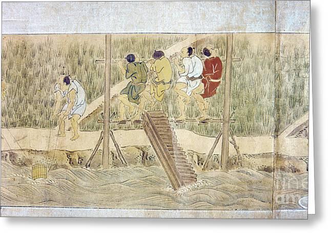 Japan: Irrigation, C1575 Greeting Card by Granger