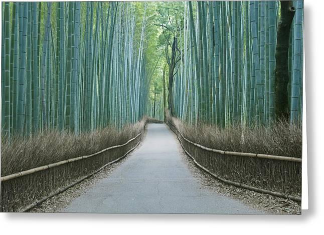 Japan Kyoto Arashiyama Sagano Bamboo Greeting Card