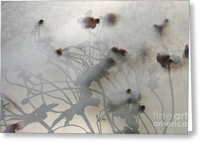 Japanese Anemones With Texture Greeting Card by Ruby Hummersmith