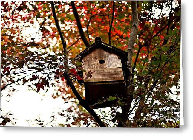 Japanese Garden In Autumn 5 Greeting Card by Dean Harte