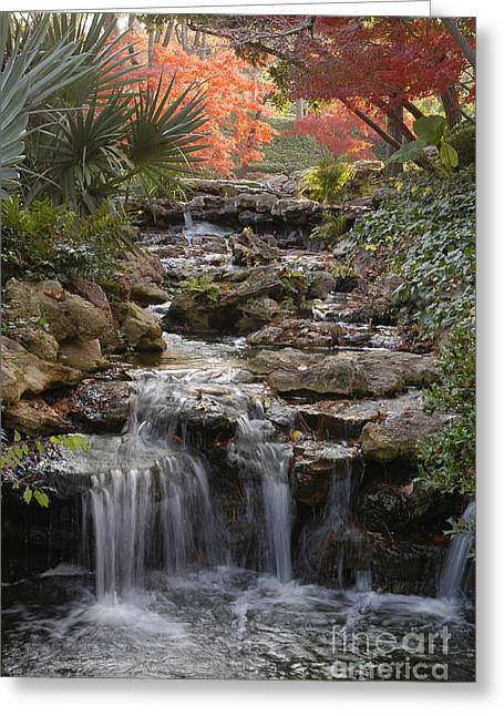 Waterfall In The Japanese Gardens, Ft. Worth, Texas Greeting Card