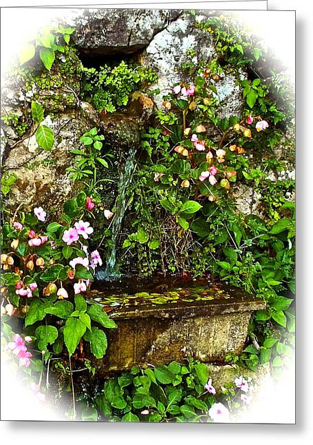 Japanese Water Feature Greeting Card