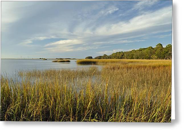 Jekyll Island High Tide Marsh Greeting Card