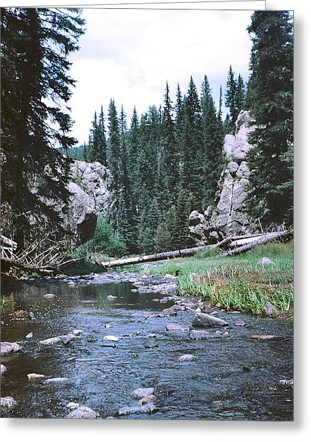 Jemez River Greeting Card by Mirii Elizabeth